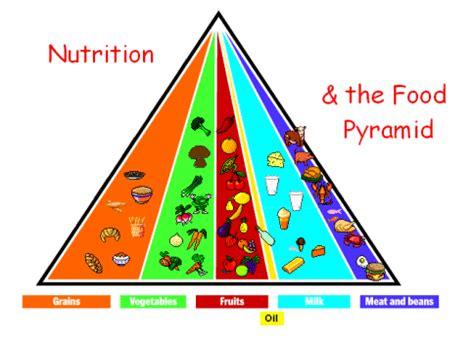 Childhood Obesity Argumentative Essay Sample